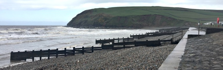 st bees 3